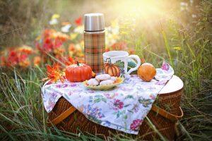 co robić w tarnowie latem piknik w tarnowie gdzie